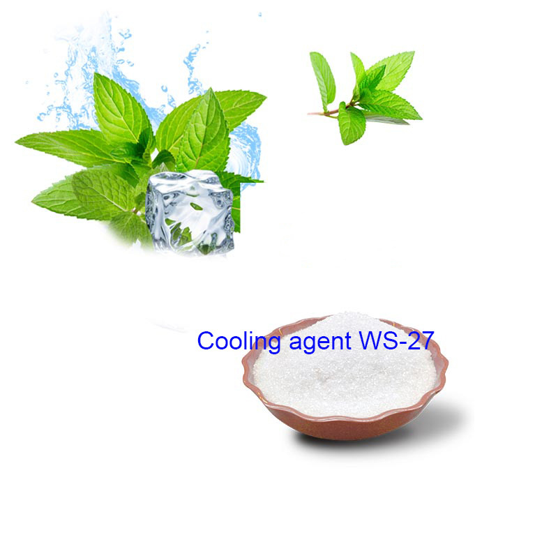 Factory ISO Certified High Quality Food Grade Cooling mint Coolants WS-27 for food and cosmetics